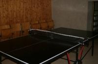 Tisch-Tennis-Platte